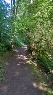 Gettman Loop Trail