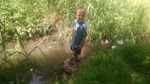 trash in Hess Creek
